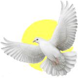 Lado espiritual de las personas